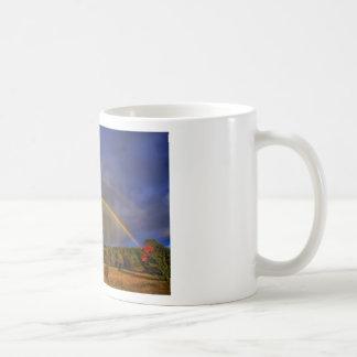 Rainbow #0954 coffee mugs
