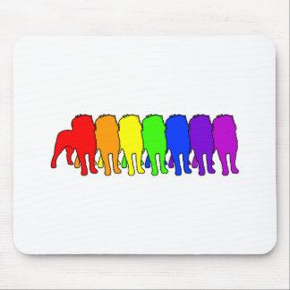 Rainbow Affenpinscher Mouse Pad