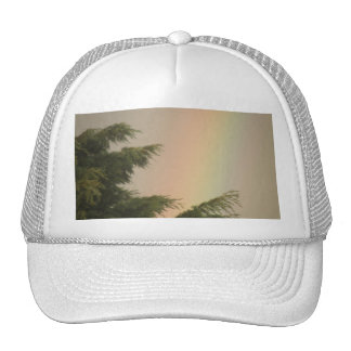 Rainbow and Trees Hat
