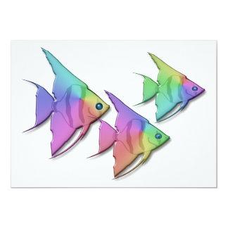 Rainbow Angel Fish Announcement