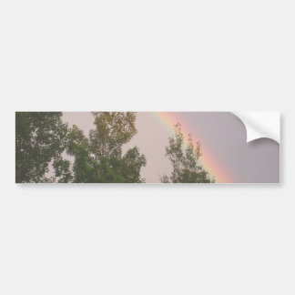 Rainbow Arching over Cedar Trees Bumper Sticker