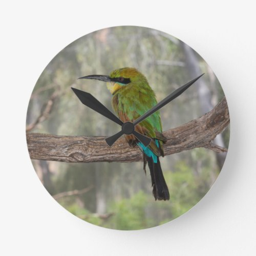 Rainbow bee-eater bird Clock