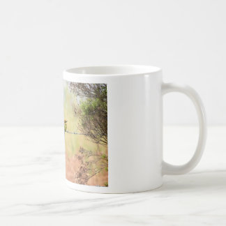 RAINBOW BEE EATER BIRD RURAL QUEENSLAND AUSTRALIA COFFEE MUG