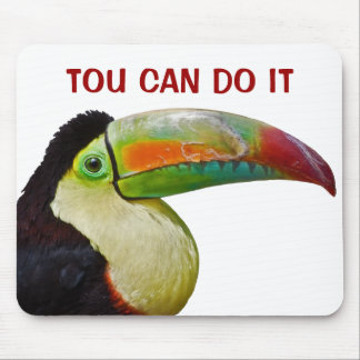 Rainbow-Billed Tou Can Do It Mouse Pad