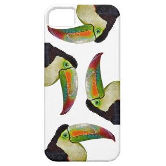 Rainbow-Billed Toucan iPhone 5 Case(Choose Colour) iPhone SE/5/5s Case