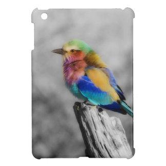 Rainbow Bird iPad Mini Covers