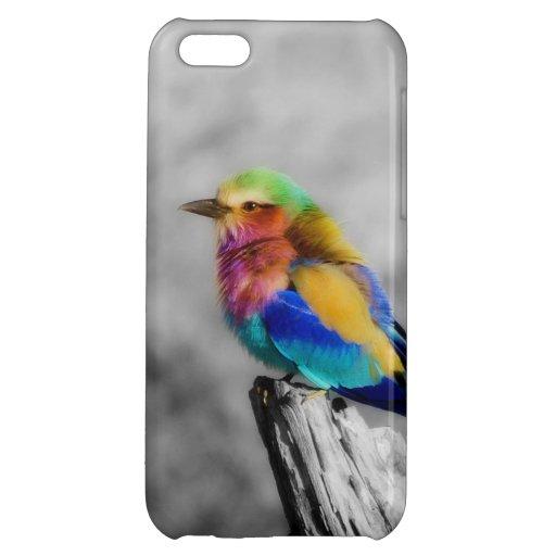 Rainbow Bird Case For iPhone 5C