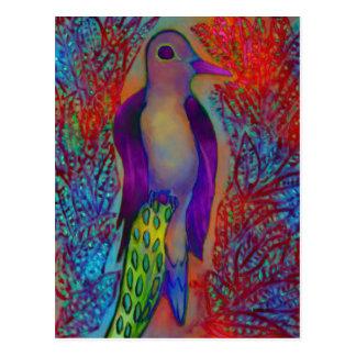 Rainbow bird postcard
