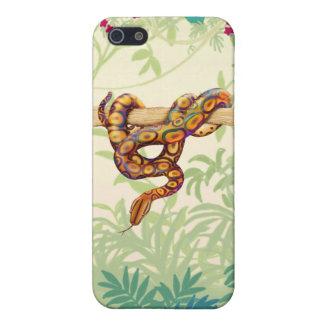 Rainbow Boa Snake iPhone Case