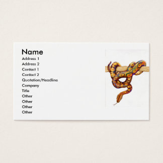 Rainbow Boa Snake Profile Card