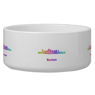 Rainbow Boston skyline Bowl