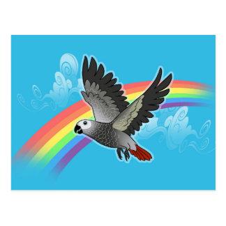 Rainbow bridge african grey parrot postcard