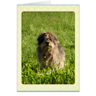 Rainbow Bridge Dog Cards