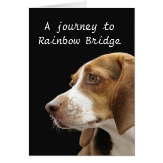 Rainbow Bridge - dog sympathy Card