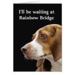 Rainbow Bridge - dog sympathy Greeting Cards