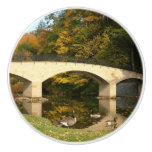Rainbow Bridge in Fall at Grove City College Ceramic Knob