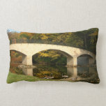 Rainbow Bridge in Fall at Grove City College Lumbar Pillow