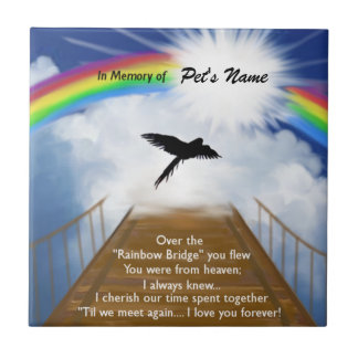 Rainbow Bridge Memorial Poem for Birds Ceramic Tile