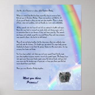 Rainbow Bridge Pet Loss (customizable) Poster