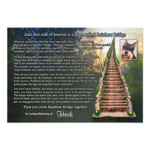 Rainbow Bridge Pet Loss Photo Sympathy Card Custom Invite
