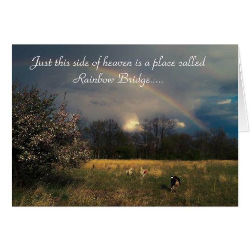 Rainbow Bridge Pet Sympathy Card Zazzle