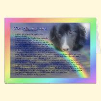Rainbow Bridge Poem Pet Loss Sympathy Card