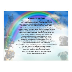 graphic relating to Rainbow Bridge Pet Poem Printable called Rainbow Bridge Presents upon Zazzle