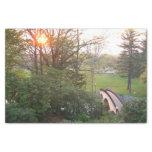 "Rainbow Bridge Sunset at Grove City College 10"" X 15"" Tissue Paper"