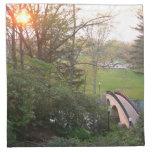 Rainbow Bridge Sunset at Grove City College Napkin
