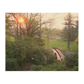 Rainbow Bridge Sunset Grove City College Photo Wood Print