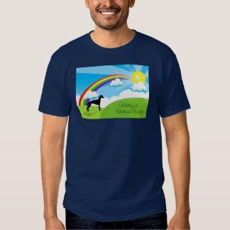 Rainbow Bridge Tshirt