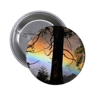 Rainbow bright behind a tree. buttons