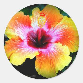 Rainbow Brite Classic Round Sticker