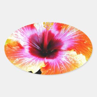Rainbow Brite Oval Sticker