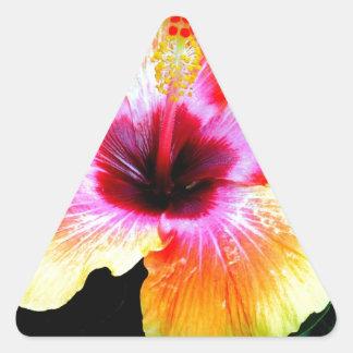 Rainbow Brite Triangle Sticker