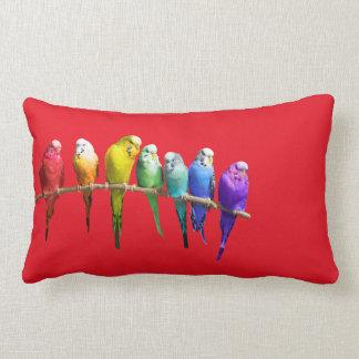 RAINBOW BUDGERIGARS Throw Pillow Cushion