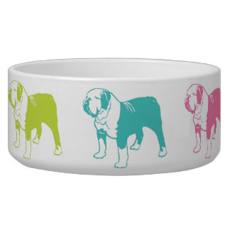 Rainbow Bulldog bowl Dog Bowls