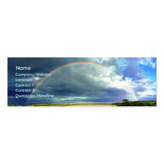 Rainbow Double-Sided Mini Business Cards (Pack Of 20)