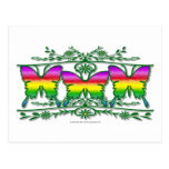 Rainbow Butterfly Band Post Card