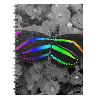 Rainbow Butterfly Color Pop Photography Notebook