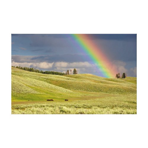 Rainbow Canvas Wall Art - rainbow wall art