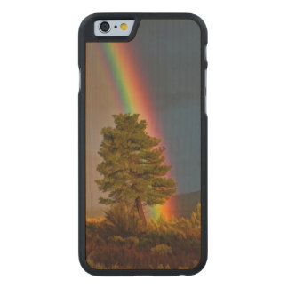 RAINBOW CARVED MAPLE iPhone 6 CASE