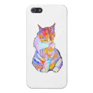 Rainbow Cat Case For iPhone 5