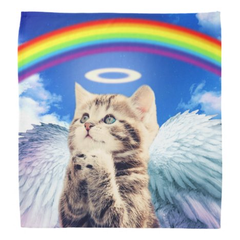 rainbow cat - cat praying - cat - cute cats bandana