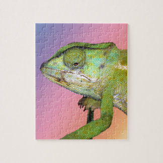 Exotic jigsaw puzzles zazzle for Siamese fighting fish crossword