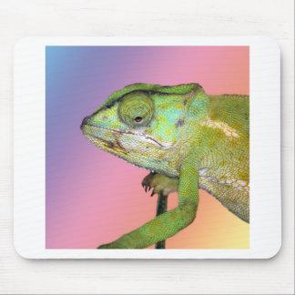 Rainbow chameleon mouse pad