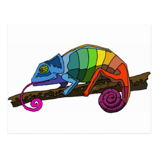 Rainbow Chameleon Postcard