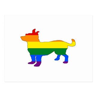 Rainbow Chihuahua Postcard