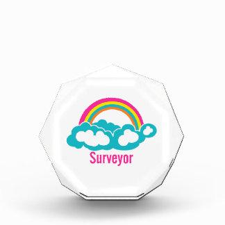 Rainbow Cloud Surveyor Awards