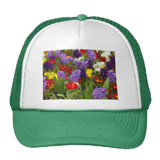 Rainbow Collection Trucker Hat